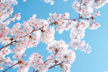 погода весна