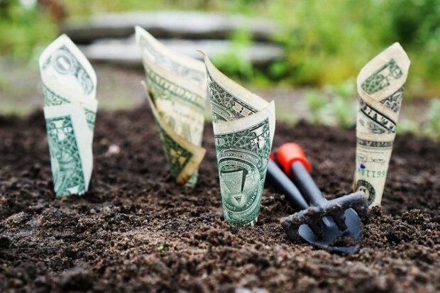 курс валют , доллар, деньги