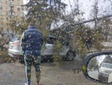 Стихия наделала беды в Харькове, кадры: пришлось вмешаться спасателям