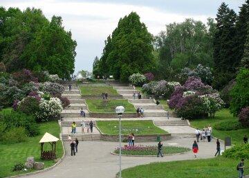 ботанический сад Киев