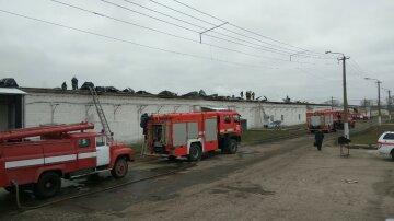 Масштабна пожежа під Києвом охопила фабрику: кадри вогняної НП