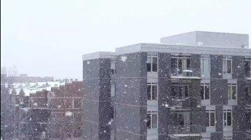 снег зима