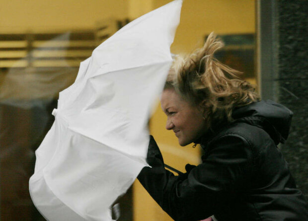 холод, ветер, дождь