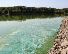 река, химикаты