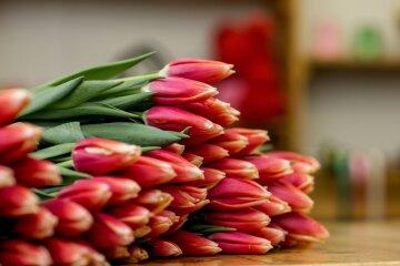 Цветы, 8 марта