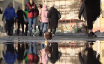 Весна скасовується, одеситів попередили про мороз і дощ: прогноз погоди на вихідні
