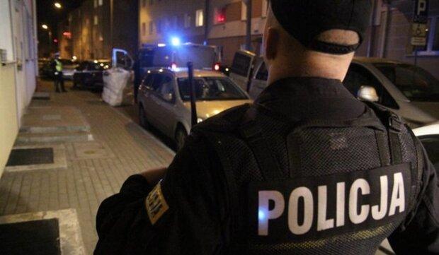 полиция, Польша, полская полиция