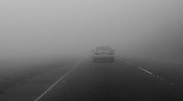 авто туман