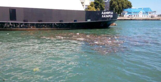 """Море біля Криму перетворилося у смітник, фото: """"навколо сміття..."""""""