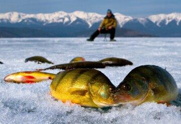 экипировка для зимней рыбалки