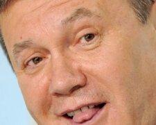 Вывез любовницу и деньги, сидит вискарик попивает: фото Януковича наделало шума