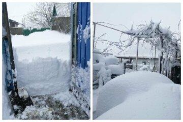 """""""Снега по пояс"""": в сети показали последствия непогоды в Одесской области, удивительные кадры"""