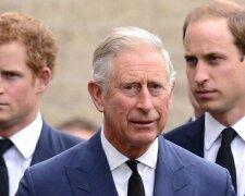 принц чарльз і сини, принц Гаррі, принц Вільям