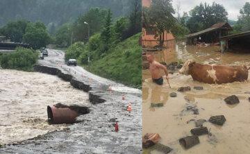 Наводнение на Западе Украины вышло из-под контроля, бешеный поток сносит дома: кадры ЧП