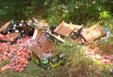 """Десятки ящиків з фруктами викинули гнити під палючим сонцем, відео: """"Запах стоїть сильний"""""""