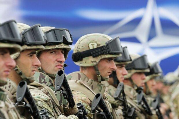 Кремль головного мозга: в «ДНР» собрались судить офицеров НАТО в Гааге