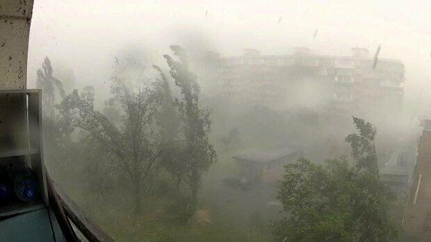 """Ураган обрушился на Харьков, есть пострадавшие: """"повалены деревья и разбиты окна"""", фото"""