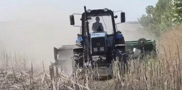 аграрии, трактор, село