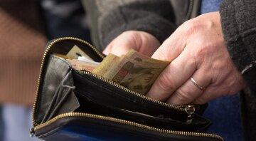 прожиточный минимум, гривны, деньги, кошелек, пособия