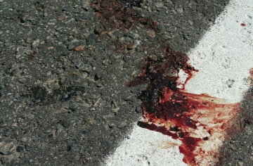 Экс-мэр убила пенсионерку и сломала ноги АТОшникам (видео)