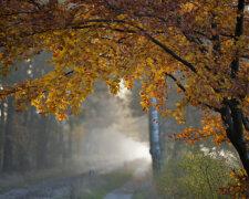 погода в сентябре, осень