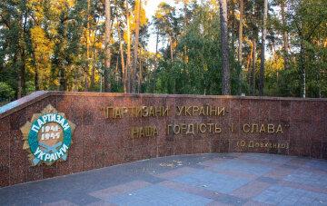 Алексей Новиков: бизнесмены уничтожают парк Партизанской славы в Киеве (видео)