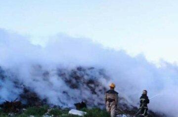 Масштабный пожар вспыхнул на Одесчине, борьба растянулась на несколько часов: кадры