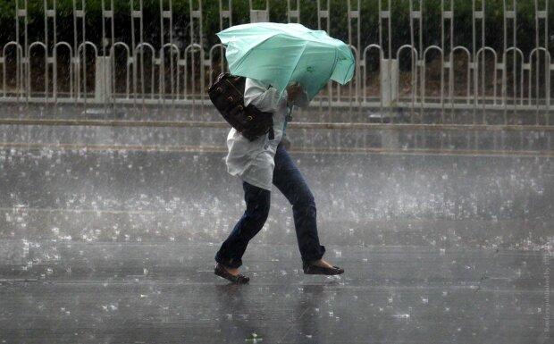 погода, дождь, ветер
