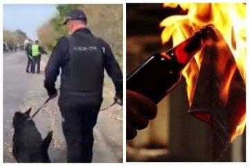 Волна поджогов накрыла Одесчину, в ход пошли коктейли Молотова: кадры ЧП