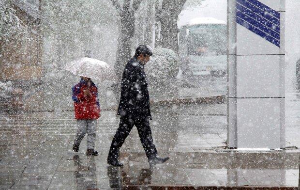 зима, ветер, снег, дождь