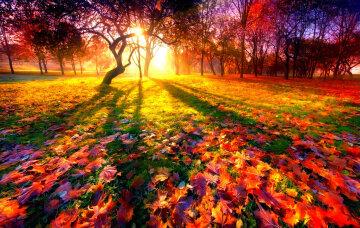 осень, погода