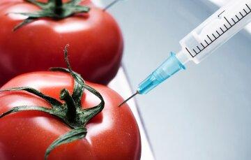 У Німеччині схвалили заборону вирощування ГМО-рослин