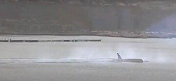 """""""Самолет-призрак"""" обнаружен на месте авиакатастрофы, фото: """"На борту были 273 человека"""""""