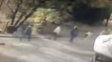 """""""Шансов выжить нет"""": неизвестные люди разбрасывают отраву по Одессе, обнародовано видео"""