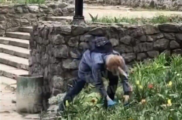 """Женщина бесцеремонно выкопала цветы в парке Киева, появилось видео: """"На салат"""""""