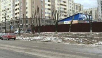 В Одесі варварськи знищили два десятки дерев заради супермаркету: кадри свавілля