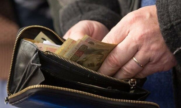 прожиточный минимум, деньги, кошелек, гривны