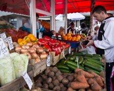 розничная торговля прилавок продукты