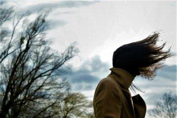ветер, погода, весна, осень