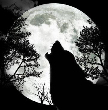 В небе над Украиной взойдет «Волчья Луна»: почему это опасно, появилось важное заявление