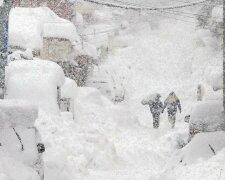зима снег заторы стихия метель