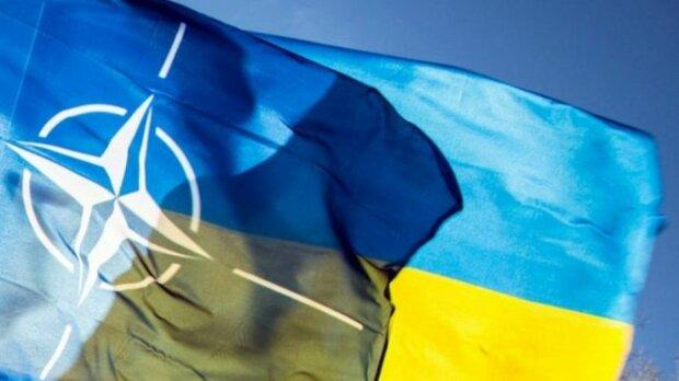 """У МЗС заговорили про бази НАТО на території України: """"Росія вже нервово відреагувала на..."""""""