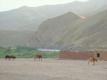 кундуз афганистан