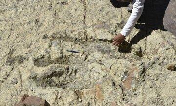 Каменный дракон: ученые показали поразительно сохранившегося динозавра (фото, видео)