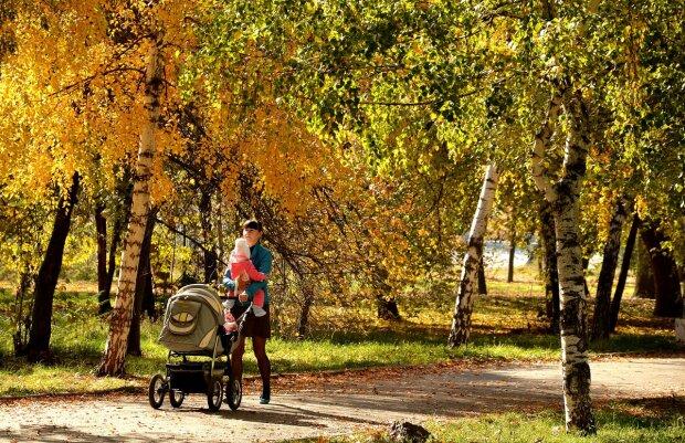погода, осень, парк, ребенок