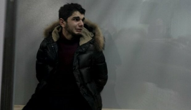 Ридав в клітці і вибачався: суд заарештував харківського «вбивцю на зебрі»