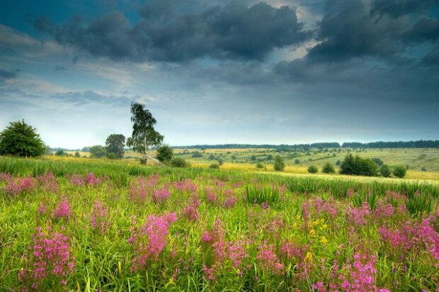 Погода дасть насолодитися свіжістю 19 липня: потім усе зміниться