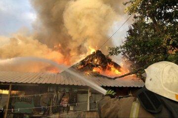 Жуткий пожар вспыхнул под Харьковом, огонь быстро распространился: кадры с места