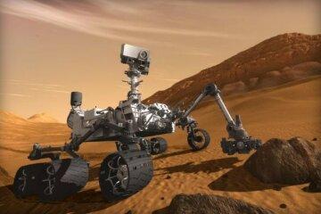 curiosity-650×433
