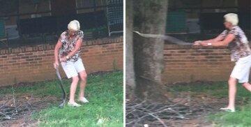 Grandma-snake-die-fight-America-557908